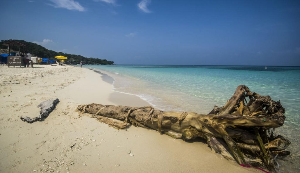 Utria beach