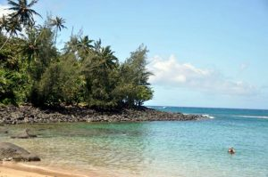 clear day on the golden sand Kee Beach in Kauai