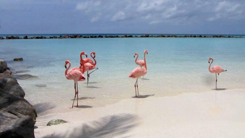 Renaissance Island on Aruba
