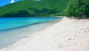 View of the white sand and cerulean waters of Francis Bay Beach in the U.S. Virgin Islands