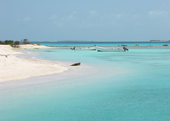 Light Blue waters at one of the top beaches of Venezuela, Los Roques