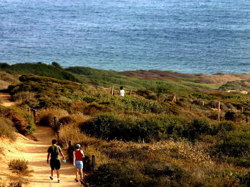 Hiking At Torrey Pines State Beach