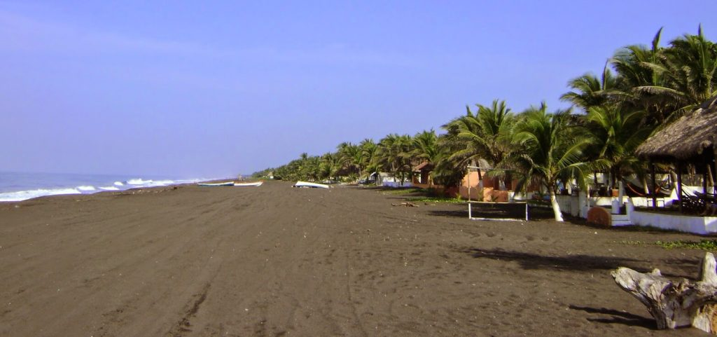 Black sands and palm trees make Playa Monterrico unique