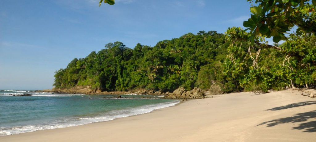 View of the beach next to to the tropical rainforest at Manuel Antonio in Costa Rica